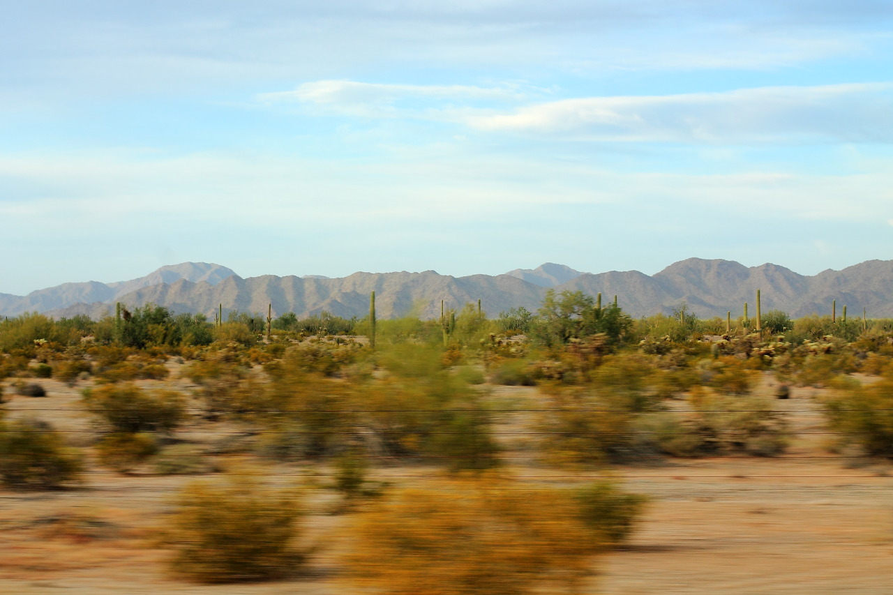 On the road with the band. Interstate 8, Sonoran Desert National Monument.